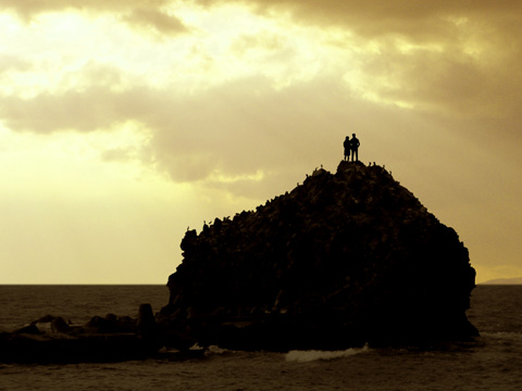 岩の上にたたずむ