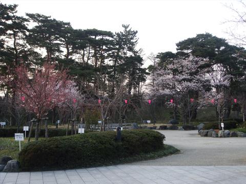 高田公園入り口