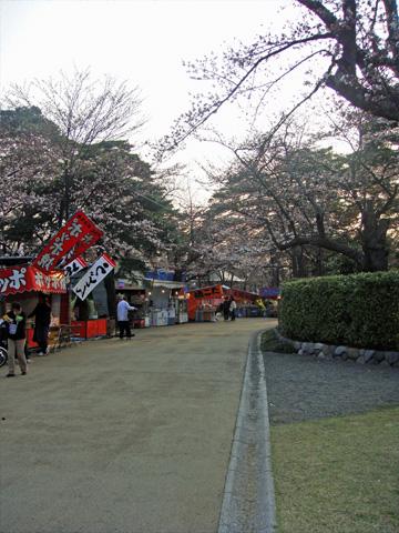 高田の桜と屋台