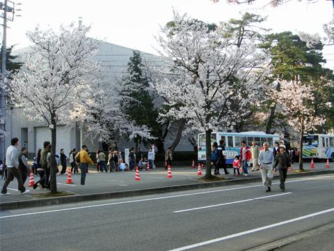 高田公園の入り口にて