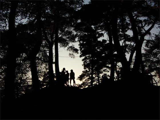 桜の木々で遊ぶ子供たち