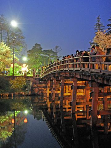 夜桜と極楽橋