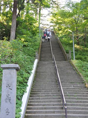 春日山神社の階段