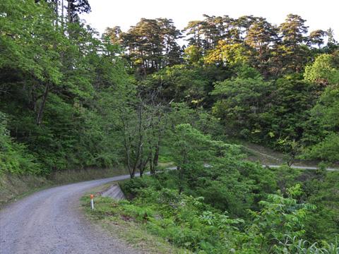 春日山神社への帰り道