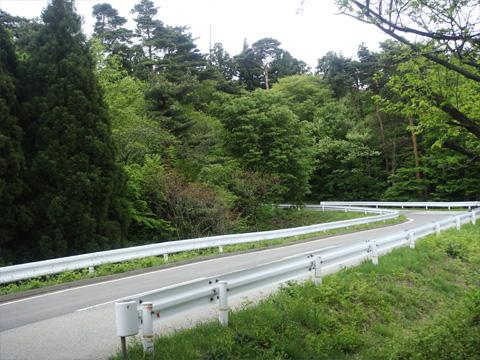 美山公園への道