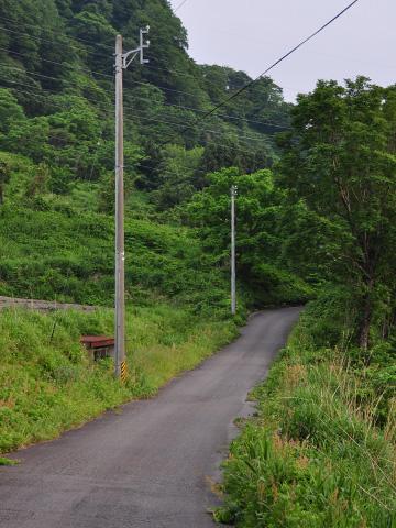 能生・新道山への山道