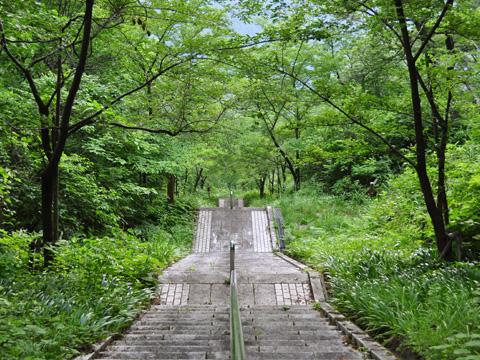 能生・新道山公園の階段