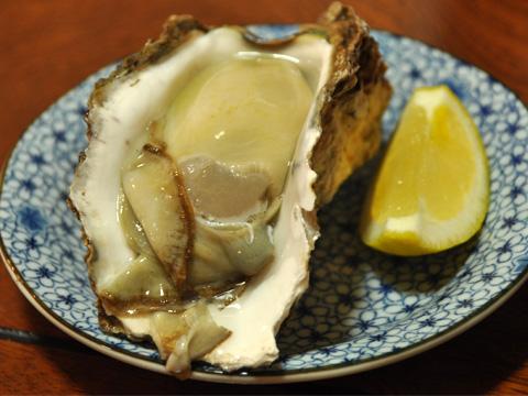 糸魚川の牡蠣