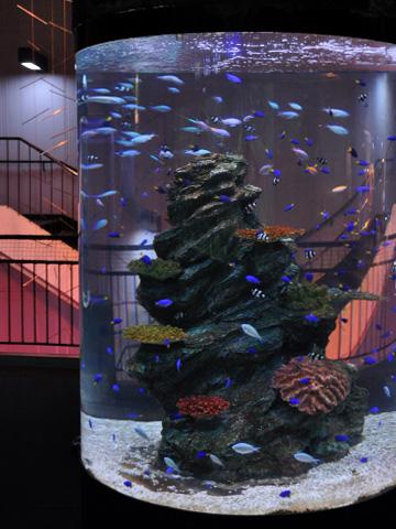上越市立水族博物館3