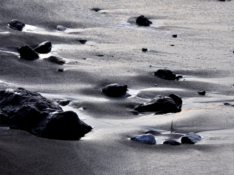 波が引いた後の砂浜