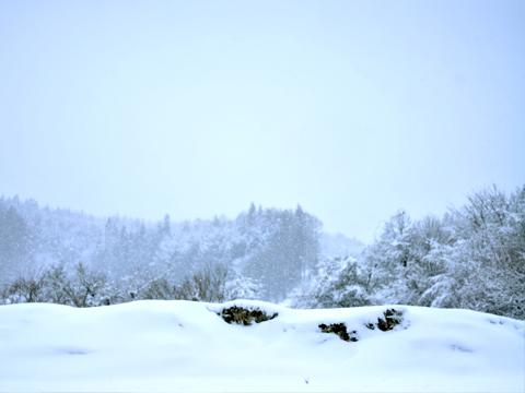 帰り道での雪景色