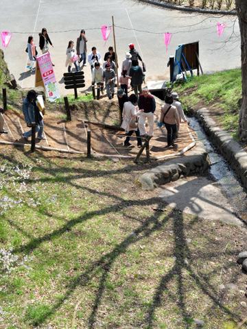 桜の影が伸びる
