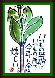 奴奈川絵手紙の会さんの絵手紙2-6