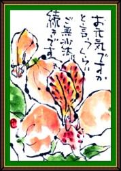 7月の絵手紙1-11