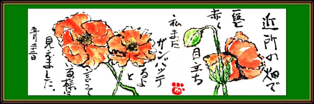 7月の絵手紙3-1