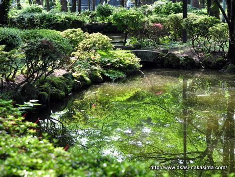 池への写りこみ