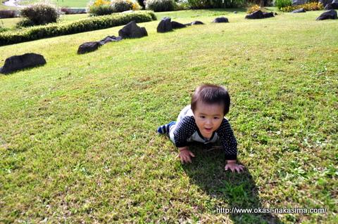 太陽の丘の芝生と息子