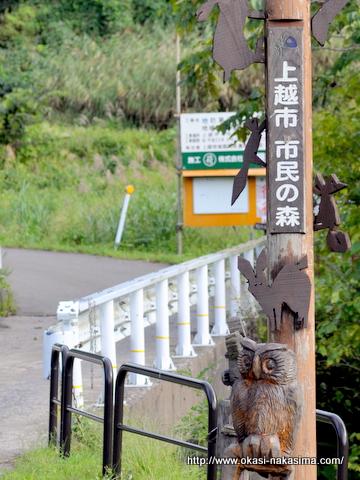 上越市市民の森の入口