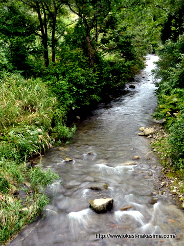 上越市市民の森の川1