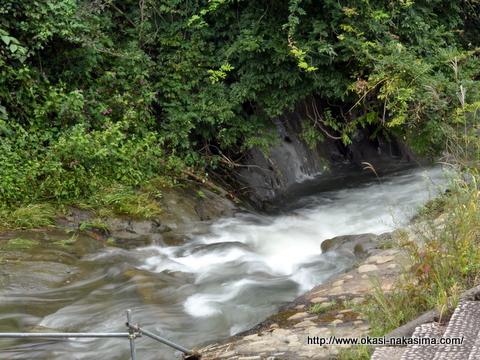 上越市市民の森の川2