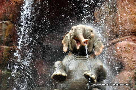 水を浴びる象さん