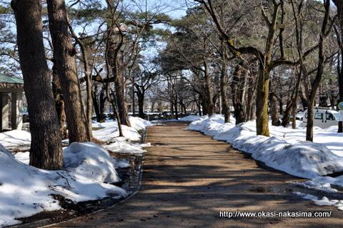 雪残る高田公園