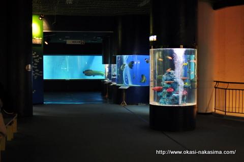 上越水族博物館入り口