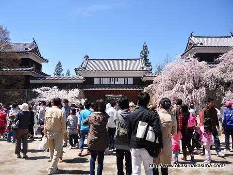 上田城・東虎口櫓門と桜