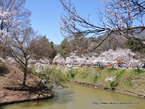 上田城のお堀と桜