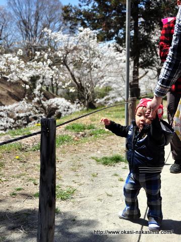 上田城で歩く息子