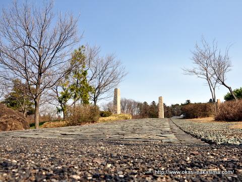 美山公園の道