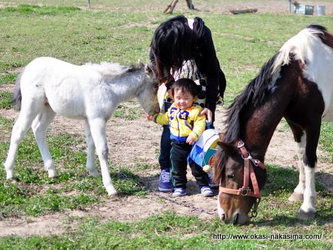 馬と家内と息子