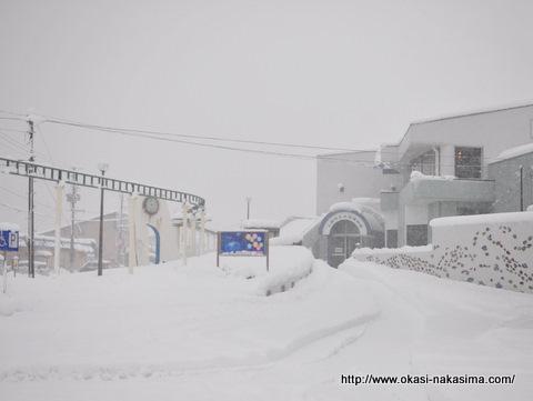 雪にうもれる上越市立水族博物館