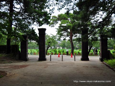 高田公園のお堀