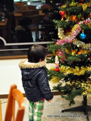 クリスマスツリーを見つめる息子