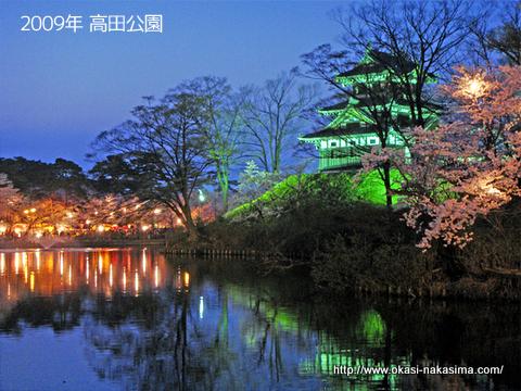 2009年高田公園の夜桜