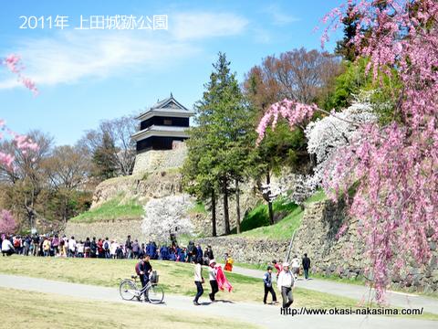 2011年上田城跡公園の千本桜