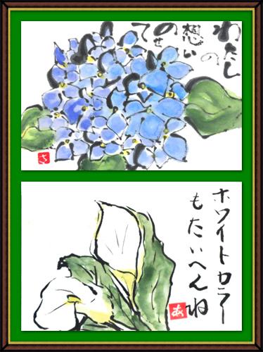 平成25年7月・奴奈川絵手紙の会さんの絵手紙