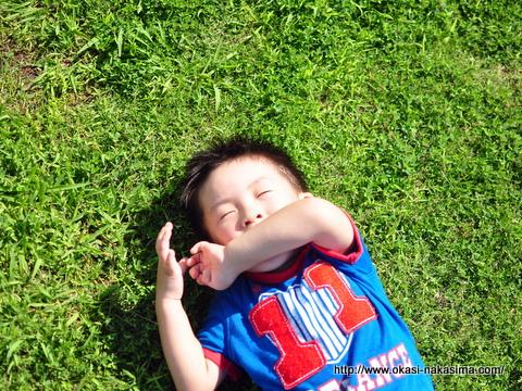 芝生に寝転がる