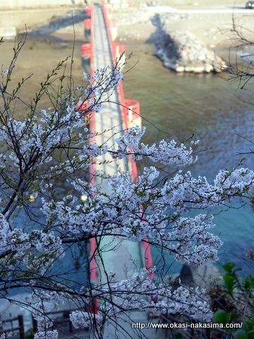 あけぼの橋と桜