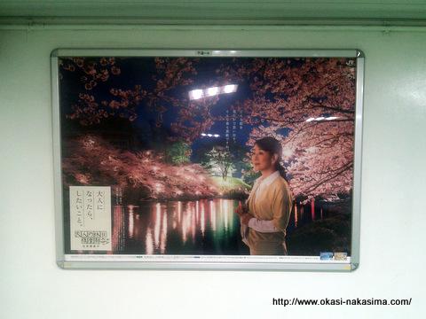 高田の花見の看板